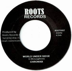 WORLD UNDER SEIGE / DUB ROCK