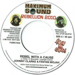 REBEL WITH A CAUSE / NO MORE TEARS