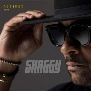 HOT SHOT 2020(gatefold/2LP)