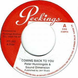 COMING BACK TO YOU (EX) / THIS IS YOU (EX)