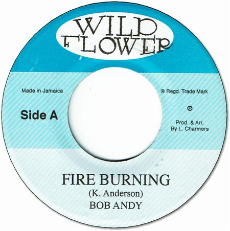 FIRE BURNING / BURNING DRUMS
