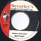 NIGHT & DAY(aka DAY & NIGHT) / VERSION