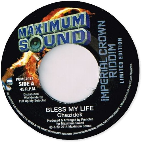 BLESS MY LIFE / DUB 2