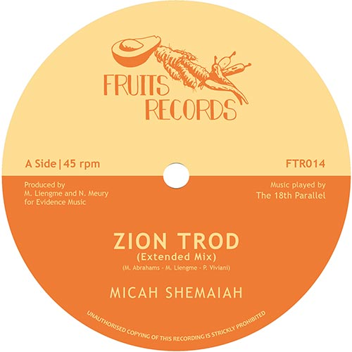 ZION TROD(Extended Mix) / SOUL RIDER(Extended Mix)