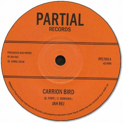 CARRION BIRD / JOHN CROW