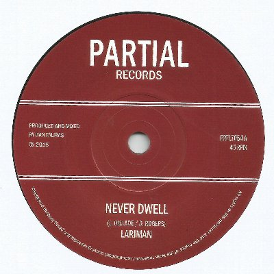 NEVER DWELL / NEVER DUB