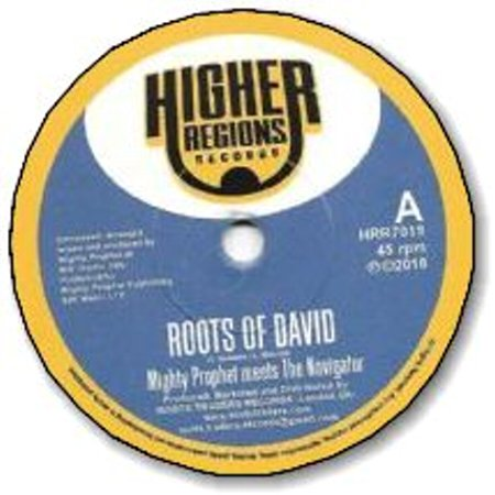 ROOTS OF DAVID / ROOTS OF DUB