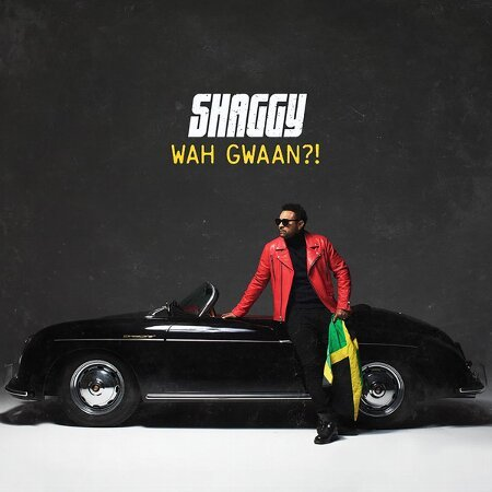 WAH GWAAN?(2LP/Gatefold Cover)