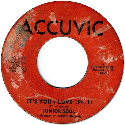 IT'S YOU I LOVE (VG+/LD) / VERSION (VG)