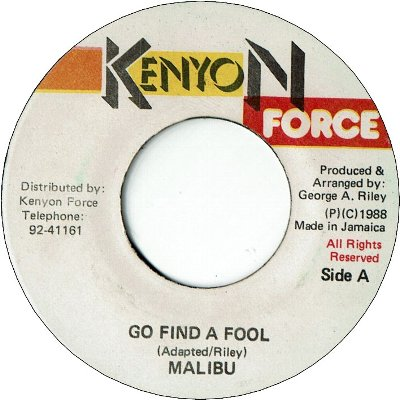 GO FIND A FOOL (VG)