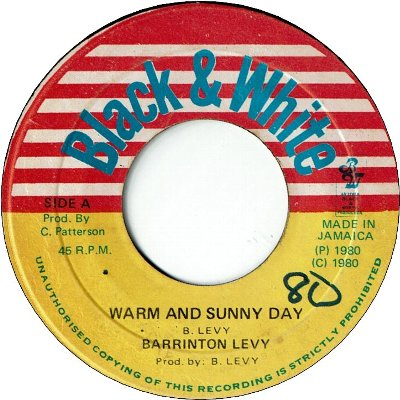 WARM AND SUNNY DAY (VG+/WOL) / SUNNY STYLE (VG/WOL)