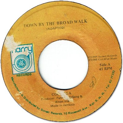 DOWN BY THE BROAD WALK (VG+) / VERSION (VG-)