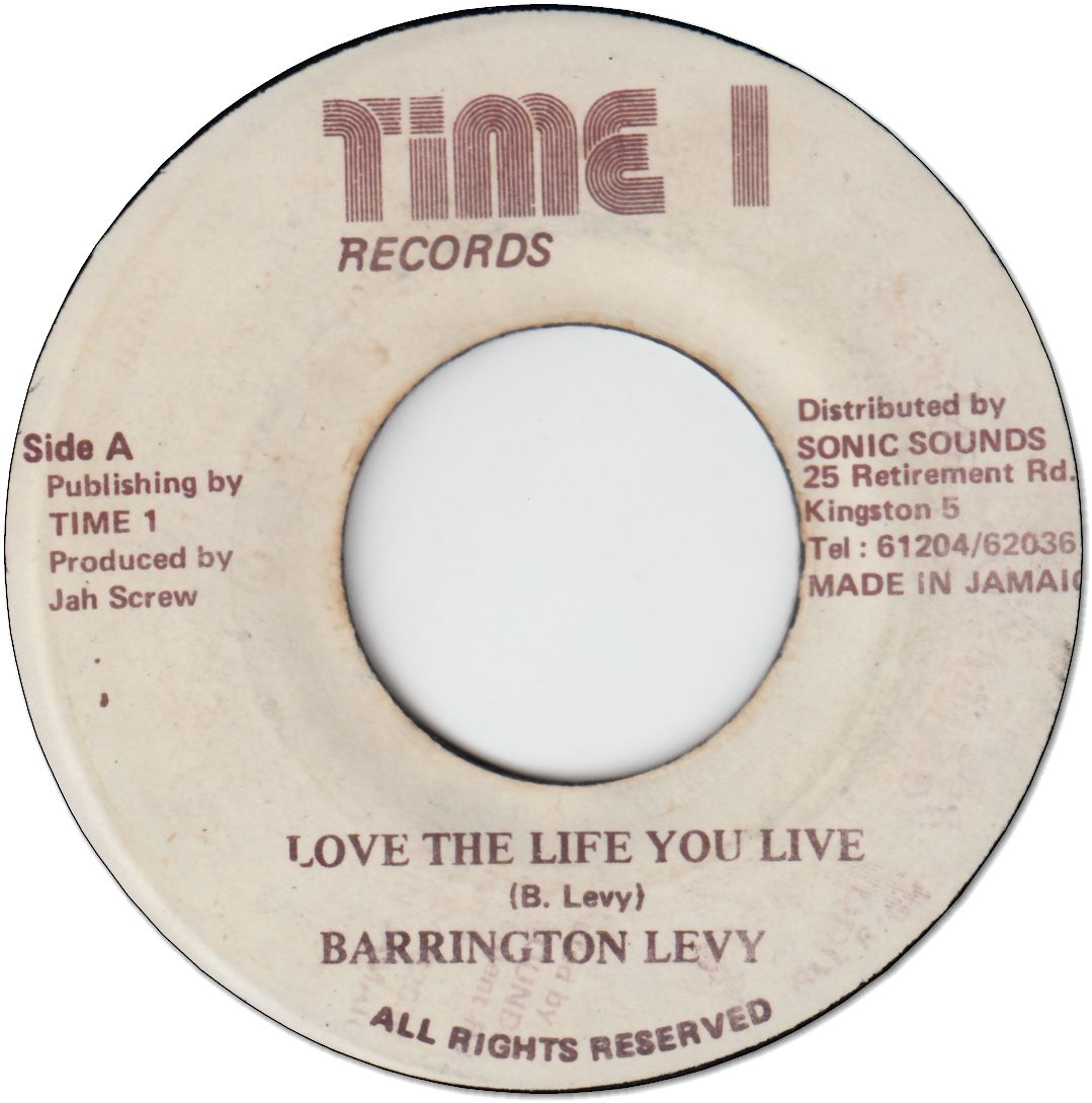 LOVE THE LIFE YOU LIVE (VG)