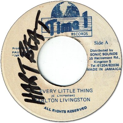 EVERY LITTLE THING (VG+/WOL)