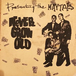 NEVER GROW OLD(Silk Screen Cover)